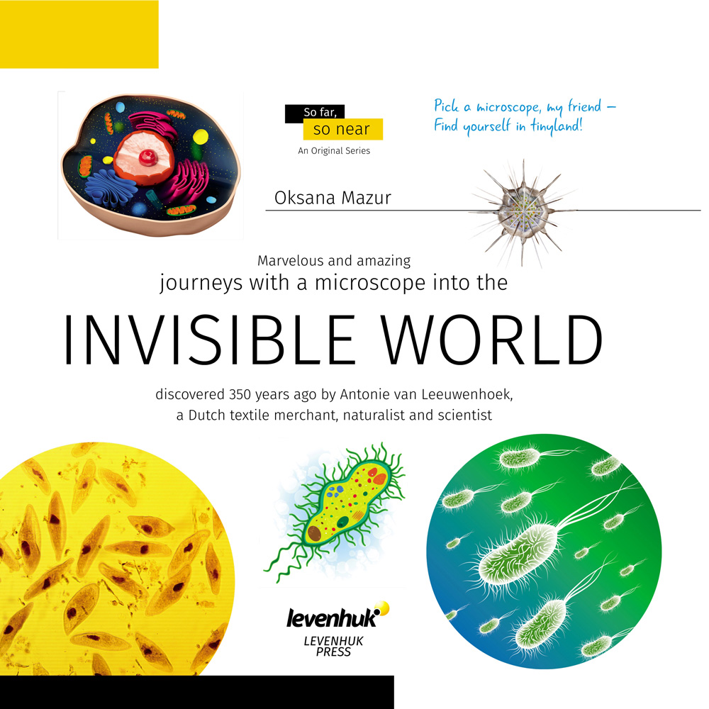 Invisible World. Knowledge book image
